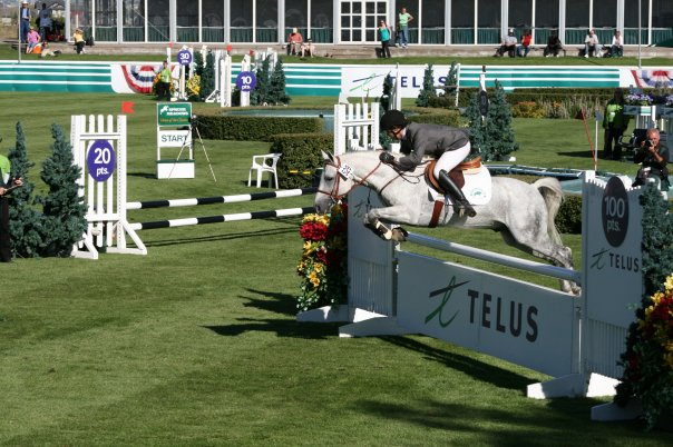 Dillon at Spruce Meadows Battle of the Breeds